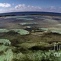 Grand Bahama Island by Paola Correa de Albury