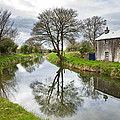 Grand Canal At Miltown by Ian Middleton