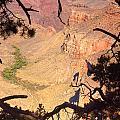 Grand Canyon 34 by Douglas Barnett