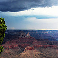 Grand Canyon Storm by Valerie Loop