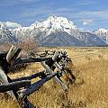 Grand Teton Nat'l Park by Wendy Elliott