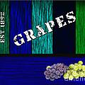 Grape Farm by Marvin Blaine