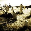 Graveyard 4724 by Timothy Bischoff
