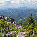 Grayson Highlands by Mel Hensley
