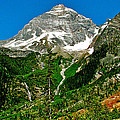 Great Glacier Trail In Glacier Np-british Columbia by Ruth Hager