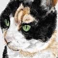 Green Eyed Cat by Lois Ivancin Tavaf