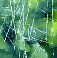 Green by Steve K