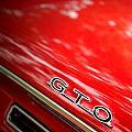 GTO by Adam Vance