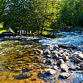 Gull River by Les Palenik