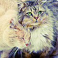 Gutter Kitties Seven by Alice Gipson