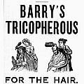 Hair Restorative, 1887 by Granger