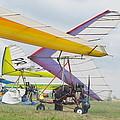 Hang Gliding by Tatyana Baykusheva