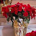 Happy Holidays by Patricia Babbitt