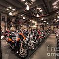 Harley Davidson by David B Kawchak Custom Classic Photography