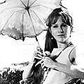 Harper, Julie Harris, 1966 by Everett