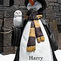 Harry Christmas by David Nicholls