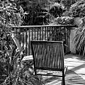 Have A Seat by Joyce Baldassarre