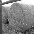 Hay Bales - Black And White Photography by Ann Powell
