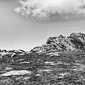Haytor Rock by Howard Salmon