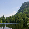 High Mountain Lake by Stacey Lynn Payne