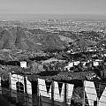 Hollywood And The Los Angeles City Skyline by David Lobos