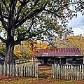Homestead On The Buffalo by Marty Koch