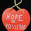 Hope Is Possible by Lisa Brandel