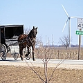 Horse And Buggy by Bonfire Photography
