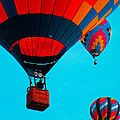 Hot Air Balloon Flight by Donna Shaw