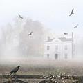 House In Fog by Jill Battaglia