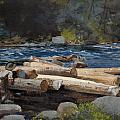 Hudson River by Winslow Homer