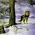 Hunting Wolf by Genio GgXpress