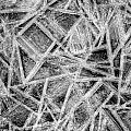 Ice Geometric by Jeff Sinon