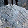 Ice On Creek by Steven Ralser