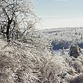 Ice Storm - 2013 by Jim Walker