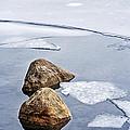 Icy Shore In Winter by Elena Elisseeva