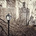 In The Shadow Of The Upper East Side  by Lisa Russo