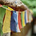 India, Ladakh, Alchi, Colorful Buddhist by Anthony Asael