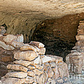 Island Trail Ruin In Walnut Canyon National Monument by Fred Stearns