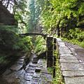 Ithaca Gorge by Jessica Jenney