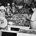 Japanese Ladies Pounding Abalone Monterey California Circa 1939 by California Views Archives Mr Pat Hathaway Archives