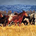 Joe's Horses by Tim Gilliland
