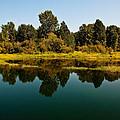 Johnson Creek by Randolph Fritz