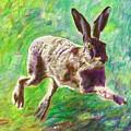Joyful Hare by Helen White