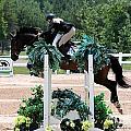 Jumper102 by Janice Byer
