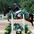 Jumper104 by Janice Byer