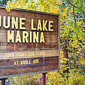 June Lake Marina Sign by Priya Ghose