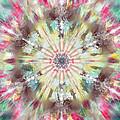 Kaleidoscope by Savannah Gibbs