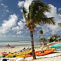 Kayaks On The Beach by Amy Cicconi