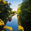 Kennet And Avon Canal by Mark Llewellyn